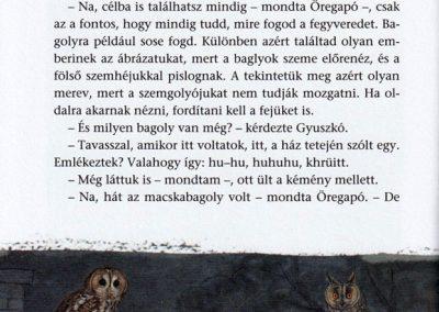 Öregapó-madarai-belso2