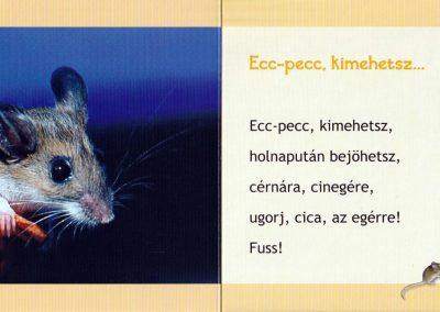 Ecc-pecc-kimehetsz-belso