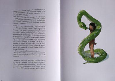 a-dzsungel-konyve-belso3