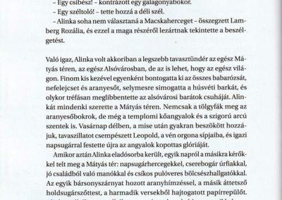 a-macskaherceg-kilencedik-elete-belso1