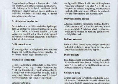 a-vilag-lepkeinek-kifestokonyve-belso2