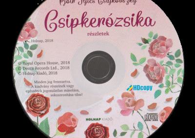 csipkerozsika-belso5
