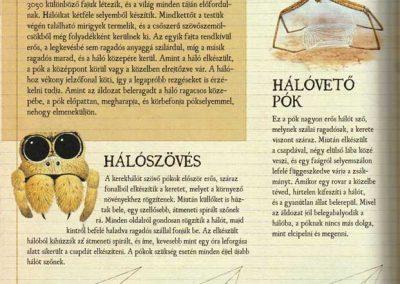 gyerek-allat-enciklopedia-belso11
