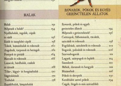 gyerek-allat-enciklopedia-belso2