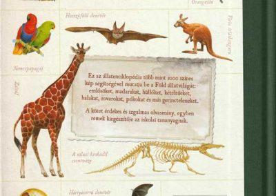 gyerek-allat-enciklopedia-hatso