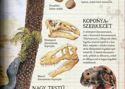 gyerek-dinoszaurusz-es-osallat-enciklopedia-belso7