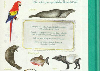 gyerek-vadvilag-enciklopedia-hatso