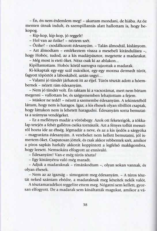 madaras-karacsonyfa-belso5
