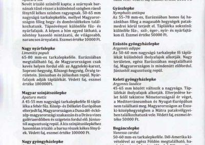 magyarorszagi-lepkek-kifestokonyve-belso2