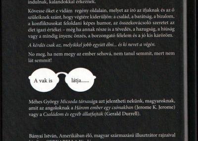 micsoda-tarsasag-hatso