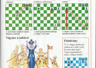 ugyeskedj-sakkban-elso-lepesek-lepesrol-lepesre-belso1