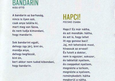 valogatos-ovodasok-verses-kalendariuma-belso1