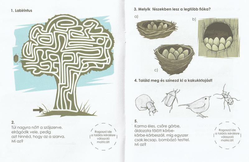 Erdolakok-belso3