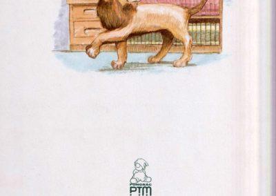 oroszlan-a-konyvtarban-hatso