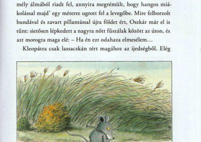 a-tigrisbogar-belso4