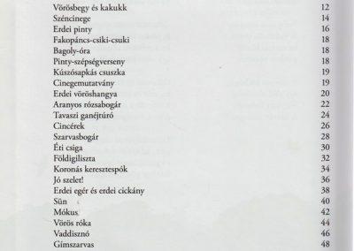 Erdolakok-belso4