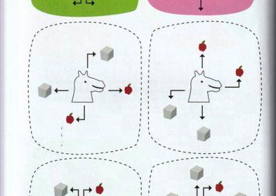 Sakk-lepesek-5-eves-kortol-belso4