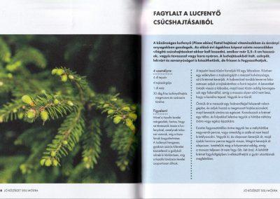 Sisu-pozitiv-eletszemlelet-finn-modra-belso3