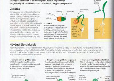 segits-a-gyerekednek-biologia-kemia-fizika-lepesrol-lepesre-belso1