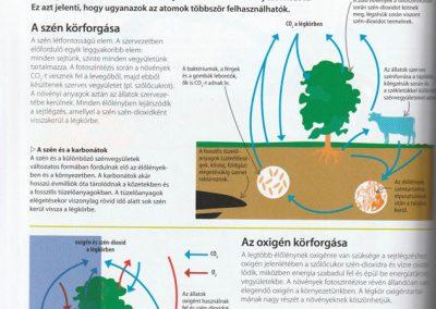 segits-a-gyerekednek-biologia-kemia-fizika-lepesrol-lepesre-belso2