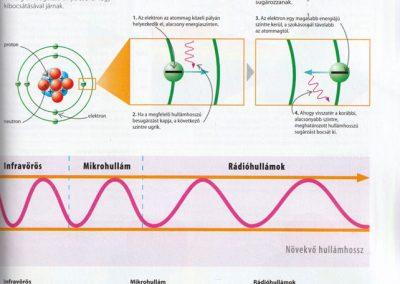 segits-a-gyerekednek-biologia-kemia-fizika-lepesrol-lepesre-belso7