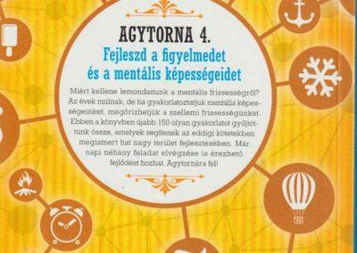 agytorna-4-fejleszd-a-figyelmedet-hatso