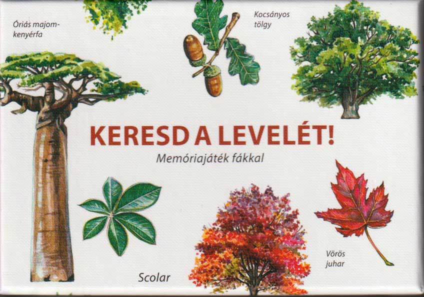 Keresd a levelét – Memóriajáték fákkal