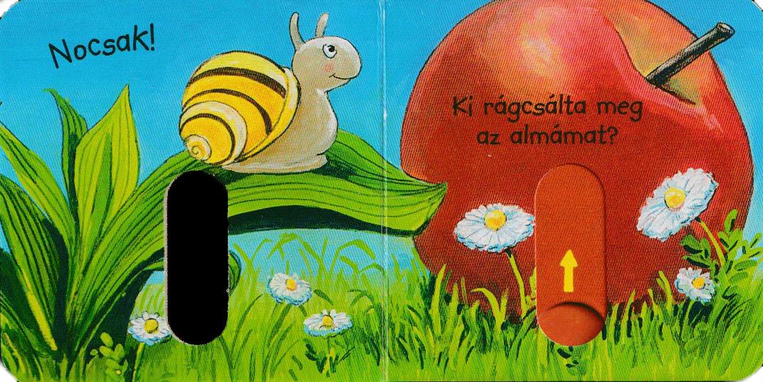kukucs-konyvek-ki-ragcsal-belso1