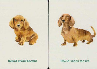 kutyakölykök-memóriajáték-belso2