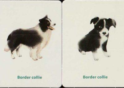 kutyakölykök-memóriajáték-belso5