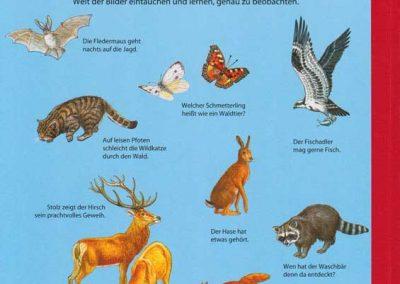 anne-suess-mein-groses-wimmelbuch-Tiere-hatso