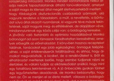 a-tukor-mogott-hatso