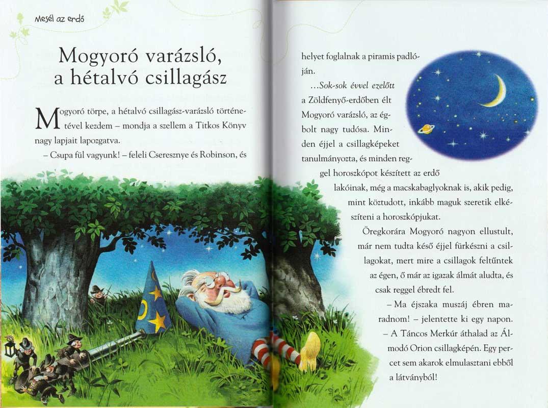 mesél-az-erdő-sorozat-7-a-varázslókról-belso2