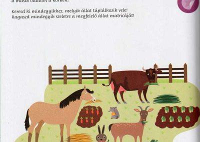 montessori-a-vilag-felfedezese-haziallatok-belso3