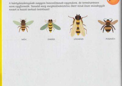 montessori-a-vilag-felfedezese-kert-belso1