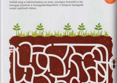 montessori-a-vilag-felfedezese-kert-belso2