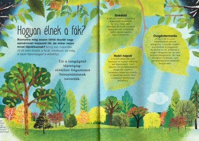 a-fák-varázslatos-világa-belso2