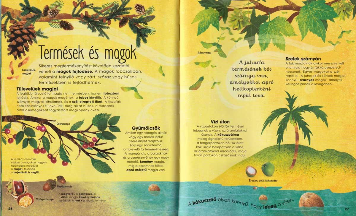 a-fák-varázslatos-világa-belso3