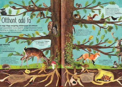 a-fák-varázslatos-világa-belso5