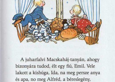 juharfalvi-emil-es-ida-a-karácsonyi-mulatság-belso1