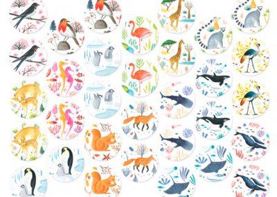 wildlife-memo-(5)
