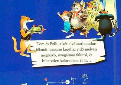 tony-wolf-a-titokzatos-léghajó-hatso