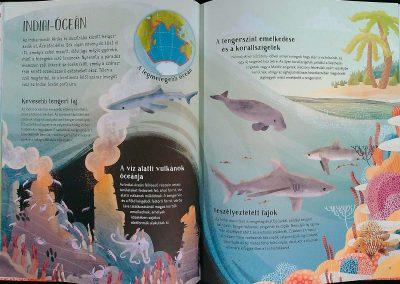 az-óceán-világa-egy-teknős-szemével-belso2