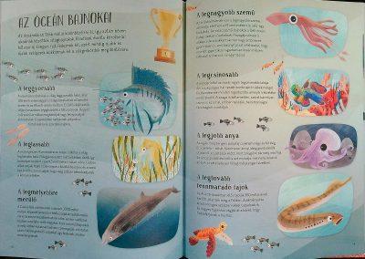 az-óceán-világa-egy-teknős-szemével-belso4