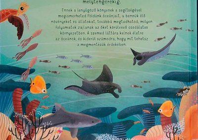 az-óceán-világa-egy-teknős-szemével-hatso