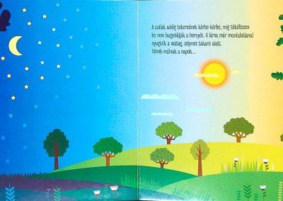 első-könyvem-pillangó-születik-belso3