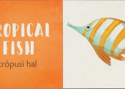 a-tenger-állatai-belso2